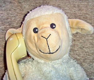 Contact Little Lamb Tales Little Lamb Phonics
